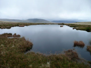 Pond on Lank Rigg