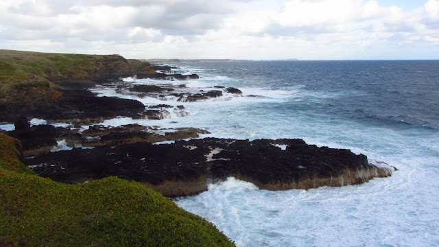 The fierce Southern Ocean as seen from The Nobbies and Seal Rocks lookout.