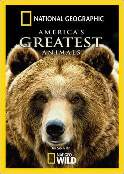 Najwspanialsze zwierzêta Ameryki / America's Greatest Animals (2011) PL.TVRip.XviD / Lektor PL