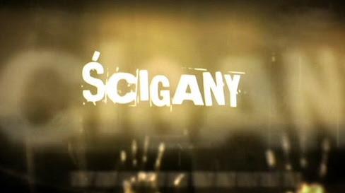 ¶cigany (2010) PL.TVRip.XviD / PL