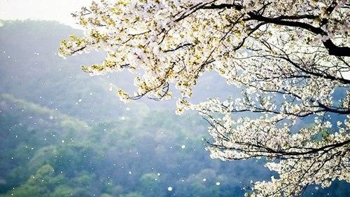 thơ ảnh giao mùa đông xuân
