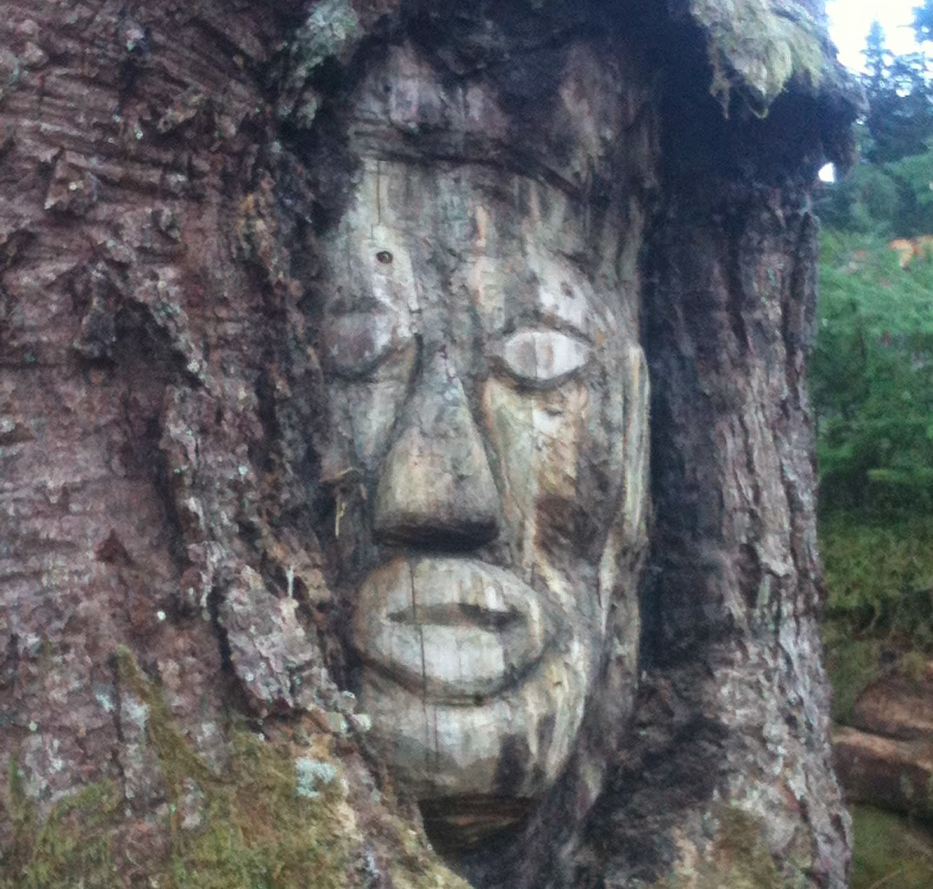 More Stuff: Loggers find 200 year old face carved in tree
