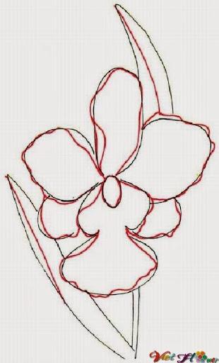 vẽ hoa lan bằng bút chì (bước 2)
