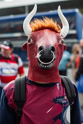 болельщик Toro Rosso с головой быка на Гран-при Италии 2014