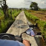 malownicza ścieżka przez pola ryżowe. na Google Maps oznaczona jako dwukierunkowa droga dla samochodów