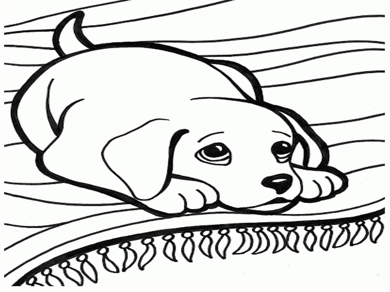 Printable Cute puppy playing coloring page sheet - cute puppy coloring pages
