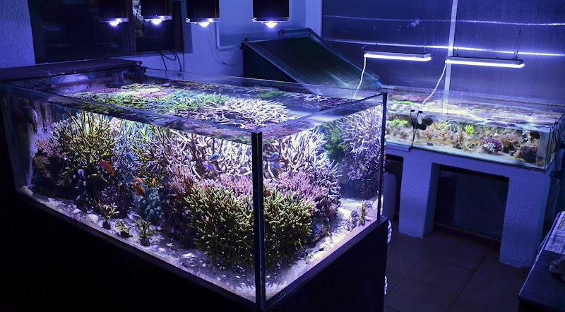 Как сделать подсветку для аквариум 585