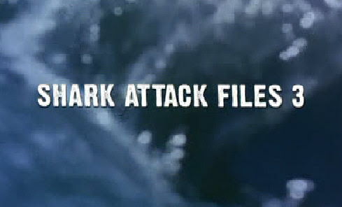 Ataki Rekinów 3 / Shark Attack Files 3 (2009) PL.TVRip.XviD / Lektor PL