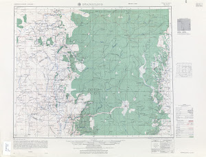 Thumbnail U. S. Army map nn40-11