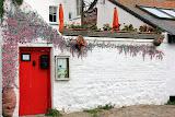 Hand Painted Flowers on a Local B&B -- Marazion, United Kingdom