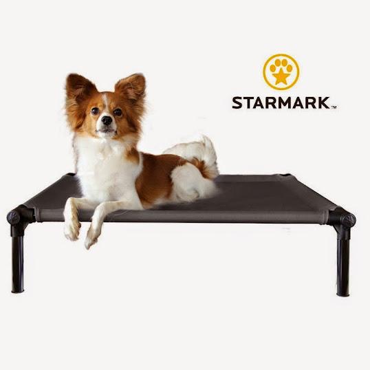 【夏日優惠】美國STARMARK星記架高涼床【灰色】~有效隔離地板濕氣