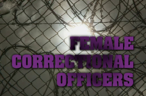 Stra¿niczki / Female Correctional Officers (2010) PL.TVRip.XviD / Lektor PL