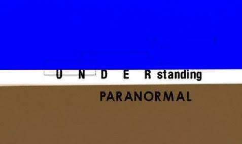 Zrozumieæ zjawiska paranormalne / Understanding Paranormal (2007) PL.TVRip.XviD / Lektor PL