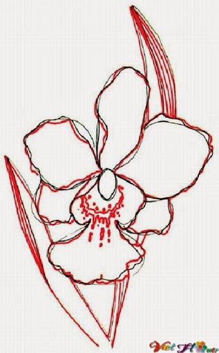 vẽ hoa lan bằng bút chì (bước 3)
