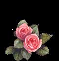 fiore-vai-inizio-pagina