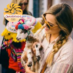 Guadalupe Tours Eventos photos, images