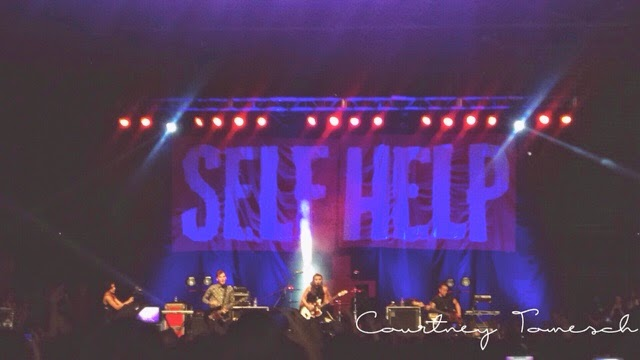 Self Help Festival Pvris
