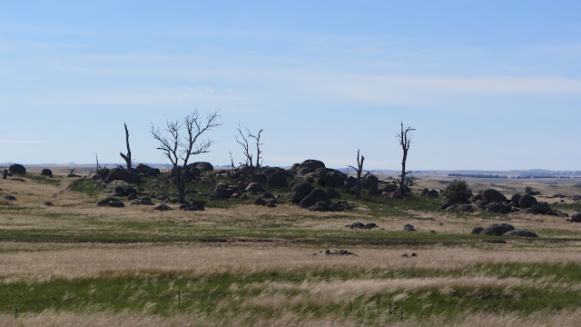 A strange landscape on the drive to Cooma and the Australian Alps.