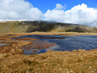 One of the tarns between Steel Fell and Calf Crag