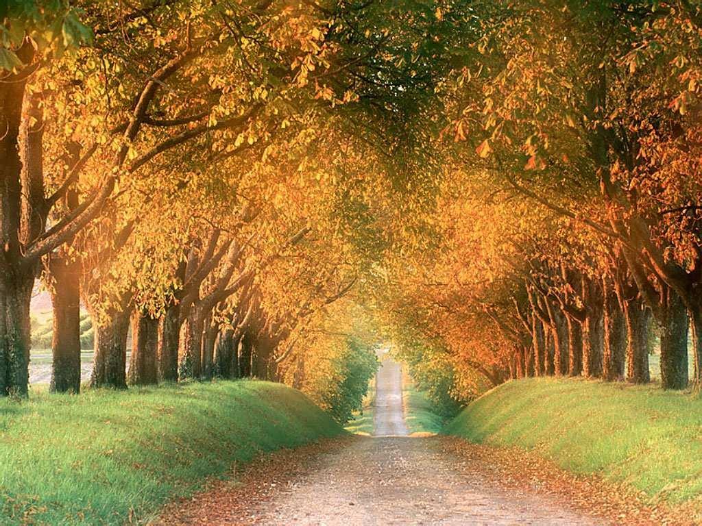 Fotos paisajes todos muy lindos! Taringa! - Fotos De Paisajes Lindos