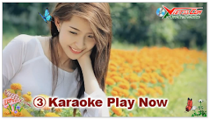 Karaoke - Ngày Em Về Thăm Quê Tôi (Beat)