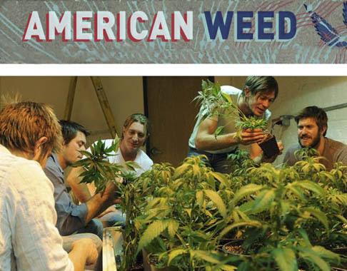 Trawka / American Weed (2012) PL.TVRip.XviD / Lektor PL