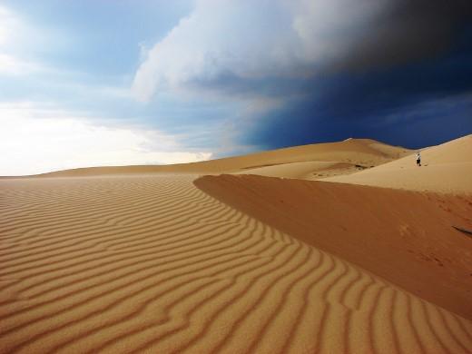 Ảnh bãi cát vàng tạo những đường sóng kẻ thật đẹp