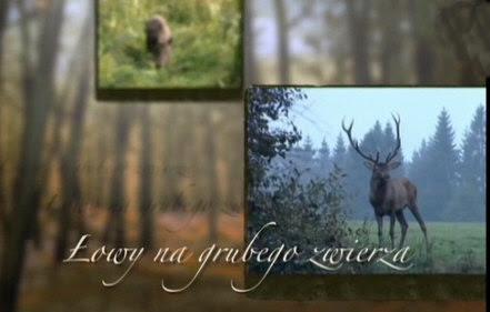 £owy na grubego zwierza (2011) PL.TVRip.XviD / PL
