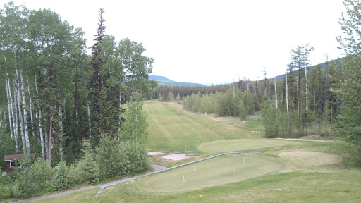 Tumbler Ridge Golf & Country Club, Golf Course Rd, Tumbler Ridge, BC V0C 2W0, Canada, Golf Club, state British Columbia