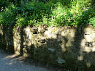 Shadows on a wall. An unusul entry into the back garden.