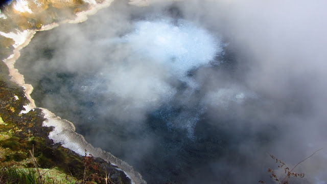 The Te Manaroa hot springs - source for the Waikite Valley Thermal Pools.