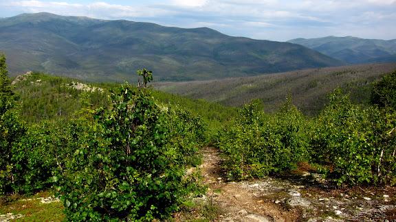 Top of Angel Rocks Trail