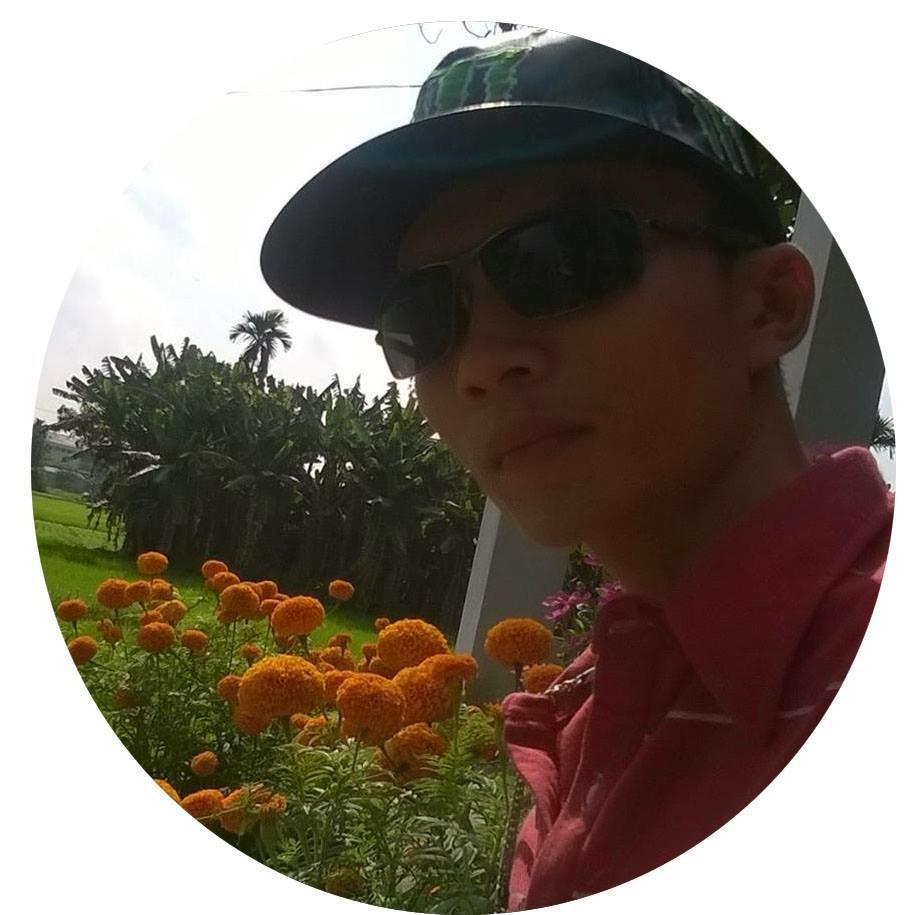 Đỗ Mạnh Hồng