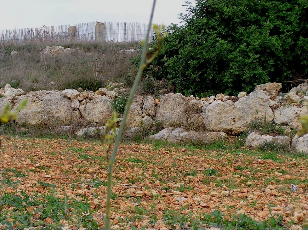 50 new sites in Malta scheduled for protection