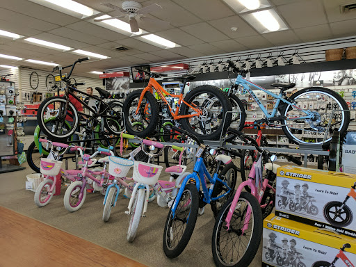 Bicycle Store «NBX Bikes of East Providence», reviews and photos, 414 Warren Ave, East Providence, RI 02914, USA