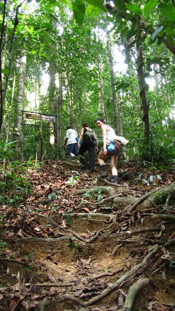 An uphill climb!
