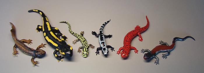 "Help me identify some ""generic"" salamander toys? - Caudata.org ..."