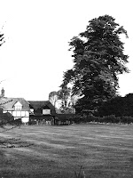Owlscote Manor Farm, lime tree. Seen from what is now Manor Lawns.