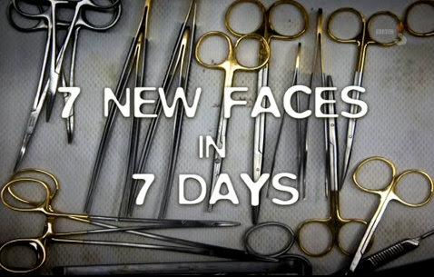 Siedem twarzy w siedem dni / Seven New Faces In Seven Days (2010) PL.TVRip.XviD / Lektor PL