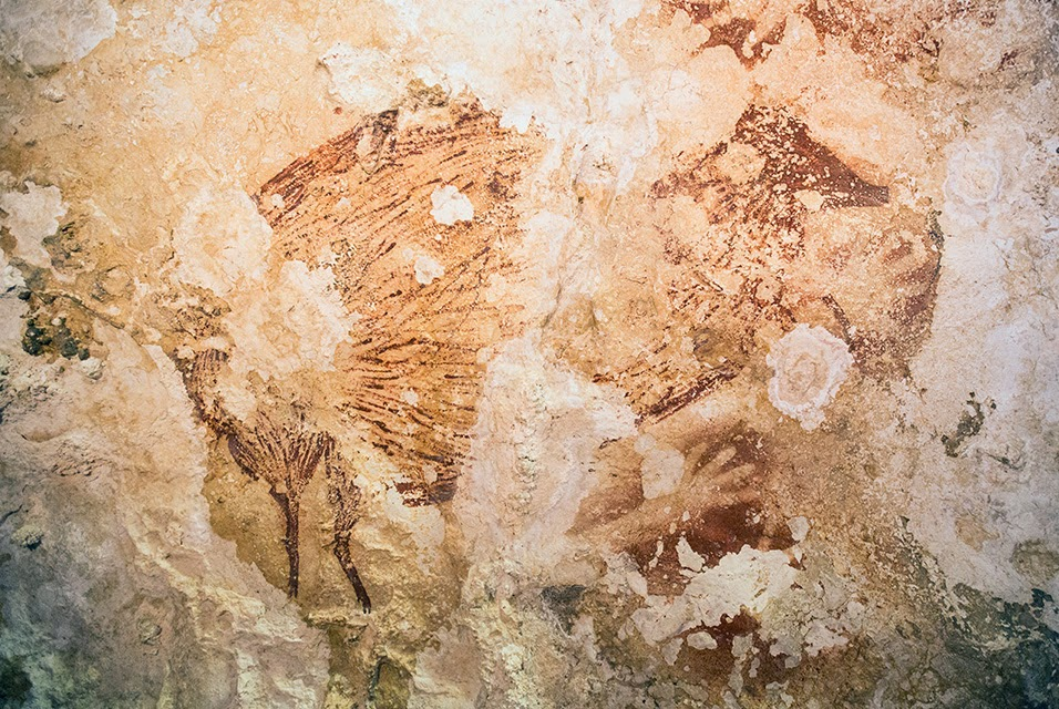 Indonesia: Indonesia pledges to protect ancient cave paintings