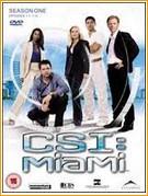Assistir CSI Miami 10ª Temporada Online Dulado Megavideo