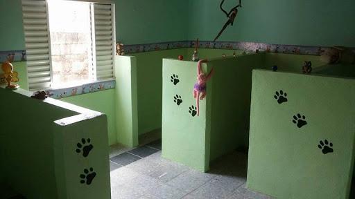 Pet Shop Bom para Cachorro, R. Rio de Janeiro, 685 - Centro, Varginha - MG, 37002-250, Brasil, Loja_de_animais, estado Minas Gerais