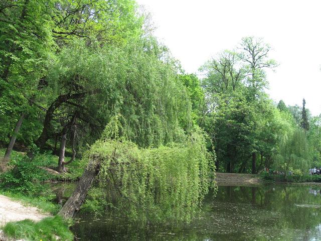 озеро краснокутский дендропарк
