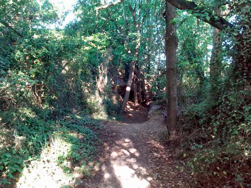 Senderismo: Vila-real - Senda del Botànic Calduch