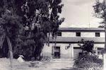 """Hacienda """" Torre Dolores """" situada en la huerta (Barrio de santa Águeda). Años 40. (Biblioteca Municipal de Catral)."""