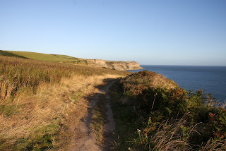 Great morning stroll along the cliffs