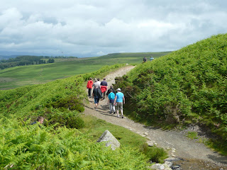 A group of walkers heading back to Pooley Bridge ... and a head in the bracken.
