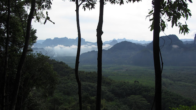 Morning mist over Khao Sok National Park.