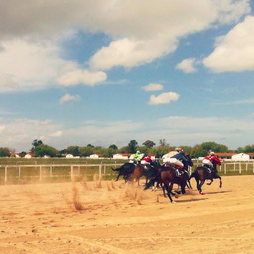 Jockey Club de Pelotas – Hipódromo da Tablada, Av. Zeferino Costa, 140 - Três Vendas, Pelotas - RS, 96065-100, Brasil, Atração_Turística, estado Rio Grande do Sul