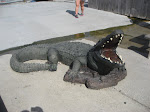 Our Airboat Adventure ride in New Orleans to see the swamps and gators 07242012-15